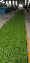 练习场专用人造草坪门球场人工草皮足球场草坪厂家直销没有中间商价格更低图片