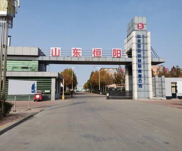 山东恒阳新材料有限公司