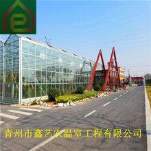 鑫艺农温室文洛式玻璃温室玻璃温室制造玻璃温室大棚造价温室大棚骨架材料