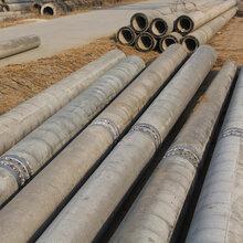 山西内蒙钢纤维电杆、部分预应力水泥电杆现货供应图片
