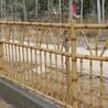 仿竹子护栏竹节绿化园艺竹子仿竹篱笆围栏
