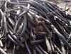 河池电缆回收废旧电缆回收厂家