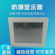 璟安供應TI~T6防爆顯示器圖片