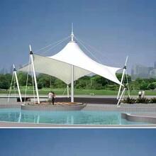 徐州專業承接景觀篷定做膜結構景觀篷景觀篷圖片