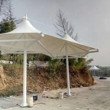 徐州專業承接景觀篷廠家定做典牧膜結構圖片