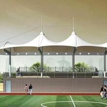 徐州專業承接景觀篷定做膜結構景觀篷典牧膜結構景觀篷圖片