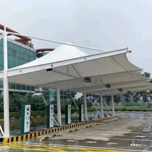 南京專業從事膜結構停車棚定做典牧膜結構工程膜結構停車棚圖片