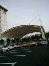 南京專業從事膜結構停車棚定做典牧膜結構工程圖片