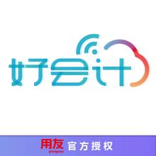 用友畅捷通云财务软件好会计专业版/年