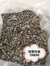 钛铌合金TiNb50图片