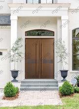mulas慕拉斯洛阳紫铜铜门、高温烤漆铜门,全国招商图片