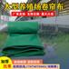 型養殖場卷簾布加厚擋風篷布豬舍牛場畜牧場帆布PVC刀刮布透光