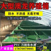 大型养殖帆布水池加厚新款PVC刀刮布定做澳龙养殖箱水池防水篷布图片