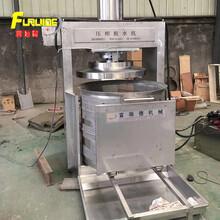 食品加工液壓式果蔬榨汁機現貨藍莓壓榨機雙桶壓榨機圖片