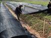 海南萬寧遮陽網建材一體化批發價格超低實惠