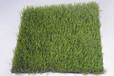 人造草坪優質廠家大量貨源價格最低