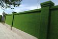 圍擋草坪裝飾公司建材一體化批發出售價格實惠
