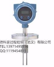 高准插入式密度计FDM13A720AAC2200MZZZ