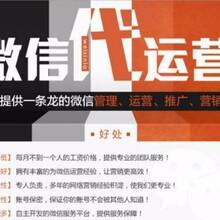 連云港公眾號托管代運營圖片