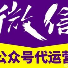 陽江公眾號托管代運營圖片