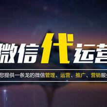 忻州公眾號托管代運營圖片