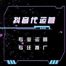 抖音快手代运营推广蓝V认证服务小程序