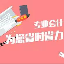 2020上海奉贤代理记账会计图片