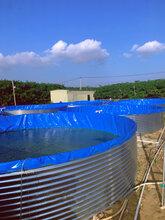 圆形镀锌板帆布养殖水池厂家批发