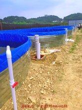 鍍鋅板水產養殖帆布水池批發圖片
