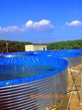 工廠化養殖帆布魚池蝦池鍍鋅板支架批發圖片