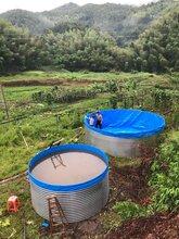 大型镀锌板养殖水箱帆布鱼池虾池图片