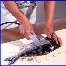 日本進口流水線用手持式魚鱗去除機TASCALE/AST-150圖片