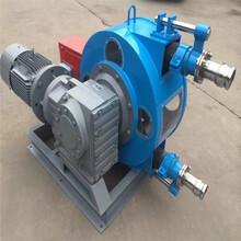 砂漿軟管泵粘稠漿料遠距離輸送耐腐蝕圖片