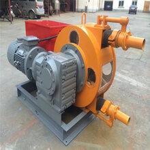 RGB軟管泵輸送發泡水泥維護方便圖片