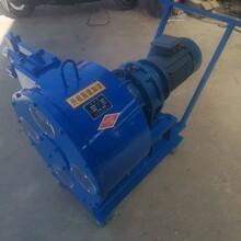 吉林大流量软管泵设备参数图片