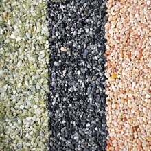 登峰厂家供应洗米石水洗石透水石子彩色石子图片