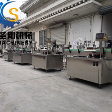 潍坊口服液灌装线生产厂家图片