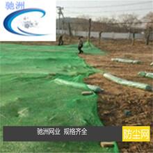 安平盖土防尘网厂A出产绿色盖土防尘网图片