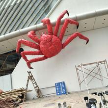 雅居乐6米螃蟹工程图片