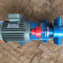 2CY系列齿轮泵输送泵皂液泵厂家直销