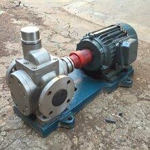 泊金海直销圆弧齿轮泵/YCB20-0.6大流量油泵