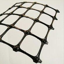 路基加固用塑料土工格栅挡土墙养殖用塑料格栅图片