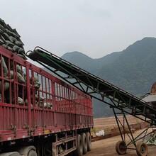 扬州污水处理陶粒生产商图片