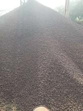 杭州輕質陶粒批發價圖片