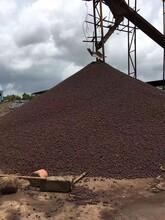 廈門污水處理陶粒多少錢圖片