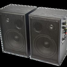 供應電教音響、教學音響、講課話筒US-100無線語音音響圖片