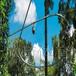 景區無動力叢林穿梭一次投入四季經營!