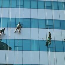 上海专业外墙清洗电话外墙玻璃清洗外墙清洗图片