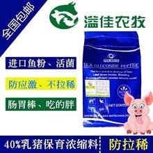 保育乳猪浓缩料猪饲料图片