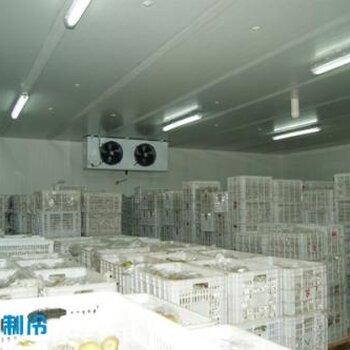 北京苹果气调保鲜冷库建造